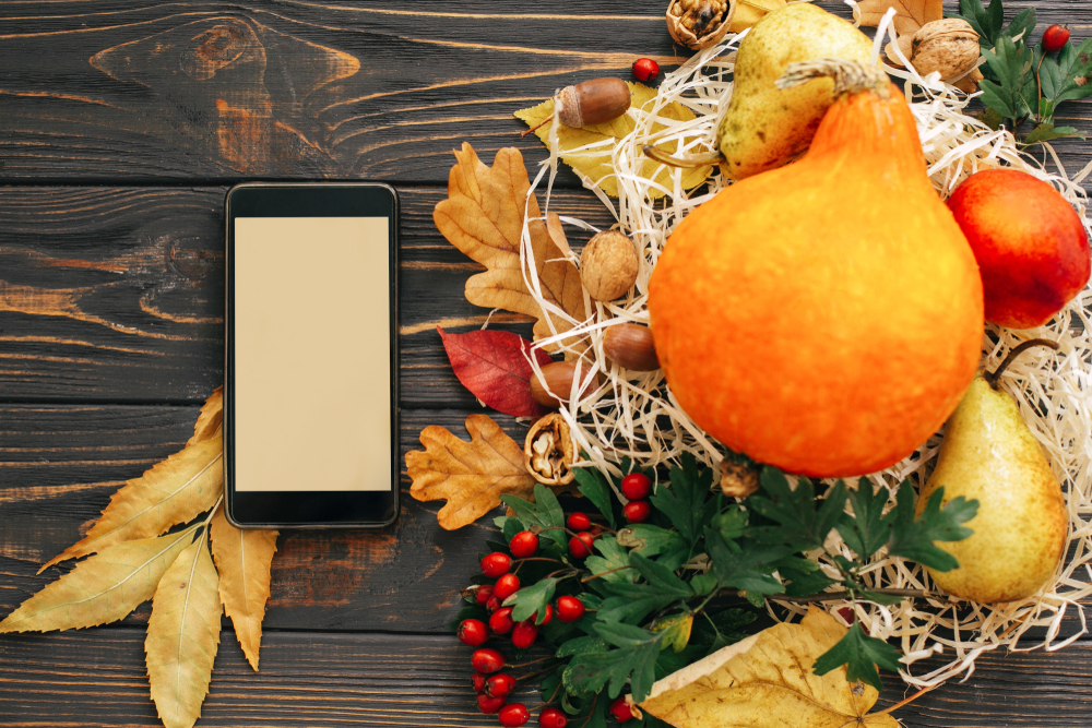 Are You Mobile Ready For The Holiday Season?