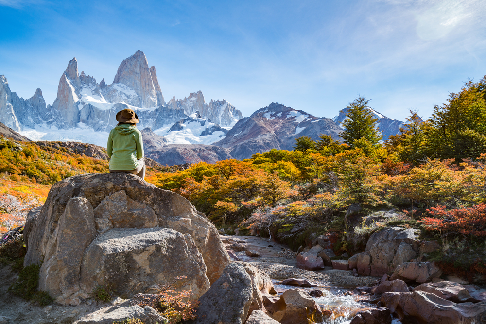 Patagonia: A Brand That Says 'Don't Buy Our Jacket'